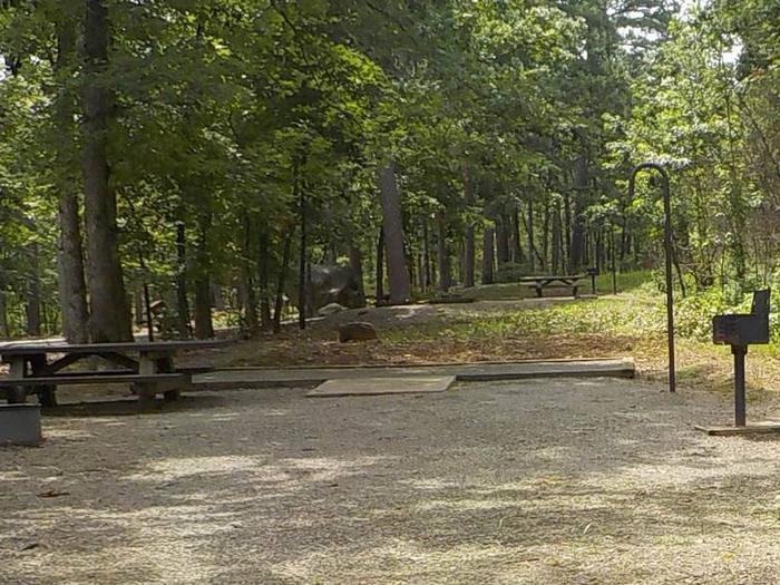 Site #19 Accessible