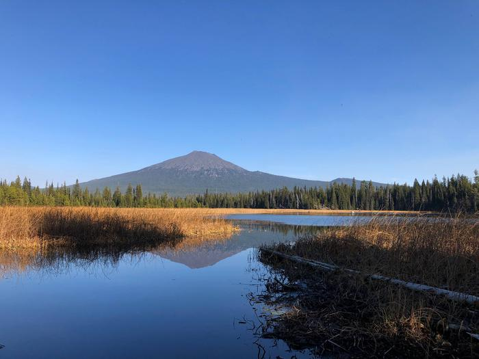 Mt. Bachelor from Hosmer Lake