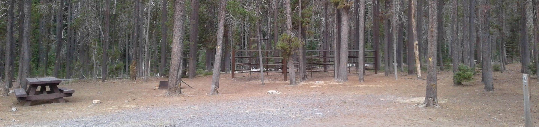 Whitefish Horse Camp 2