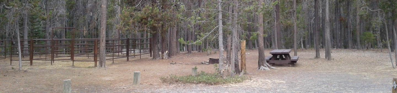 Whitefish Horse Camp 4
