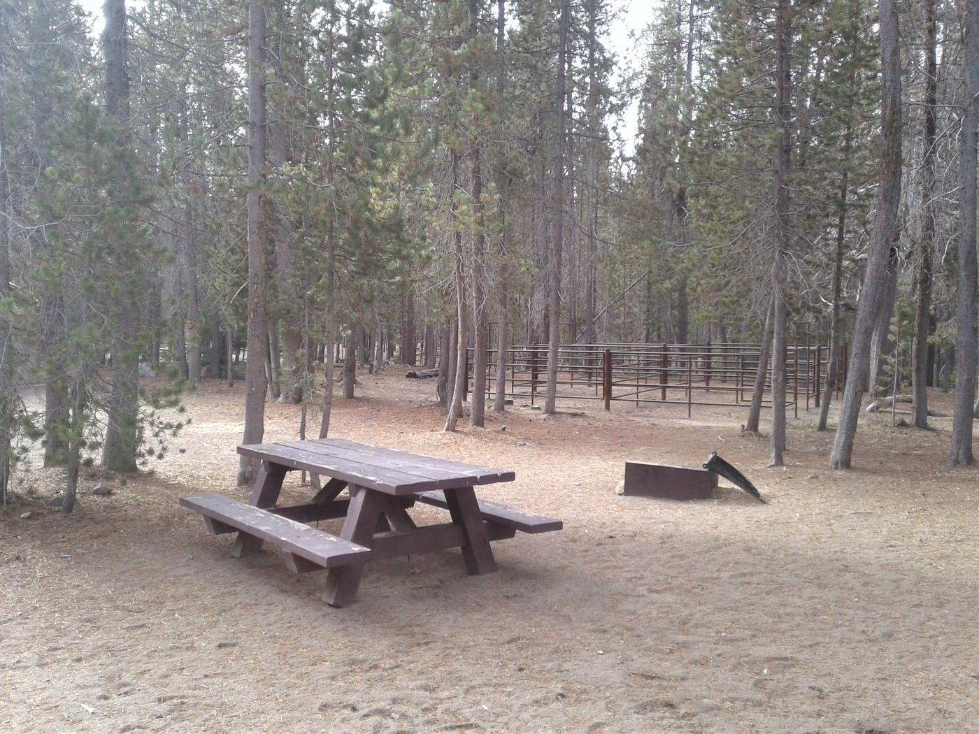 Whitefish Horse Camp 8