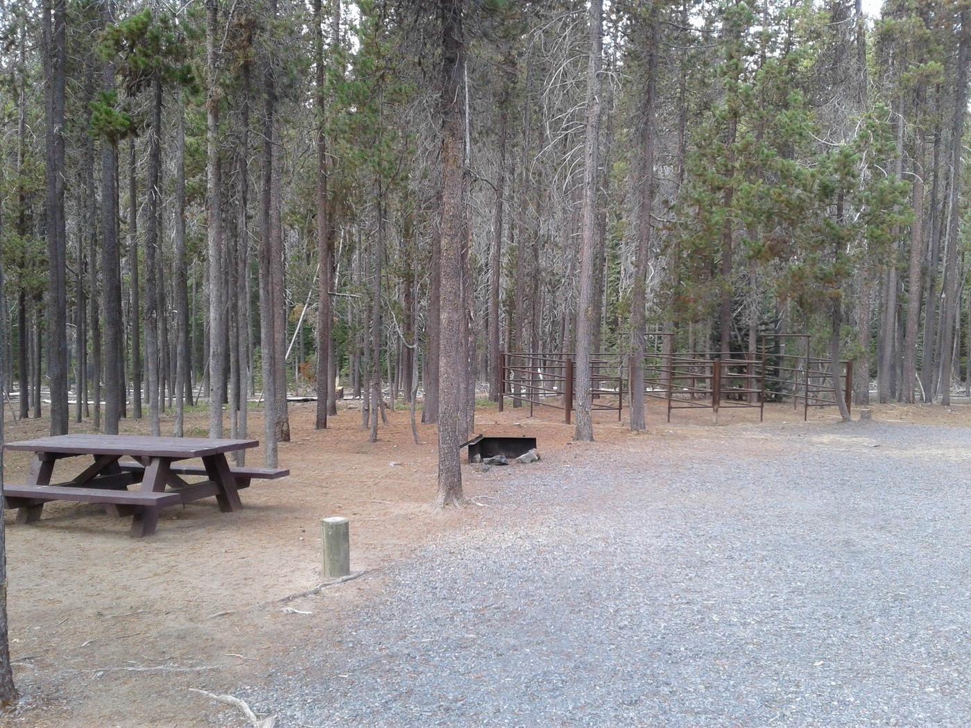 Whitefish Horse Camp 11