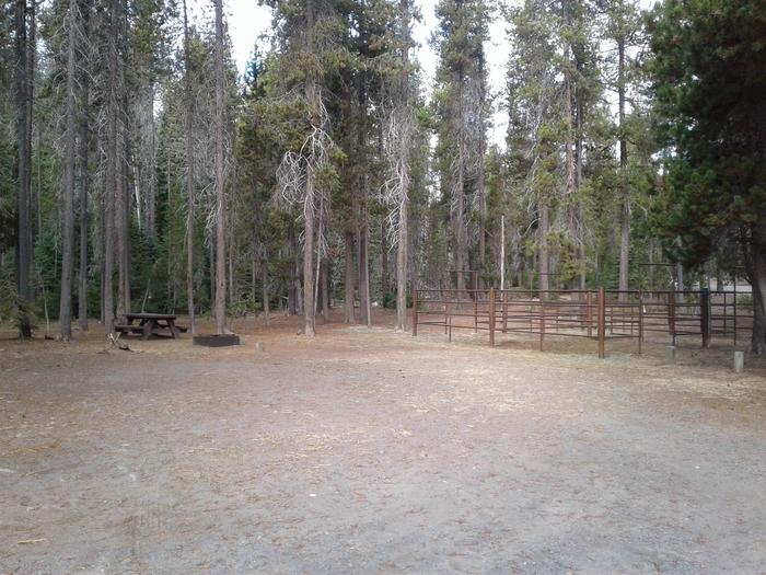 Whitefish Horse Camp 13
