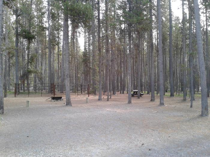Whitefish Horse Camp 14