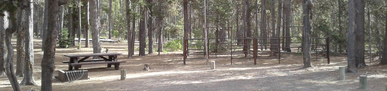 Whitefish Horse Camp 16