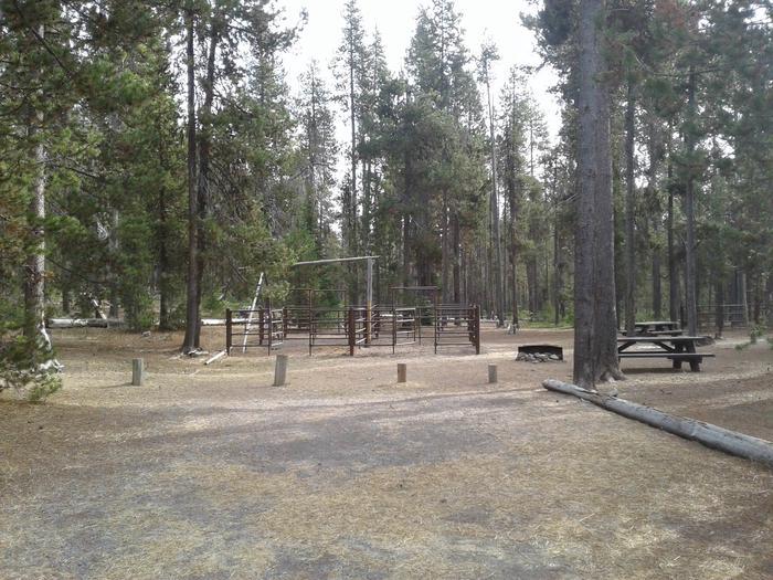 Whitefish Horse Camp 18