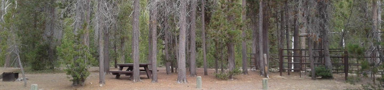 Whitefish Horse Camp 19