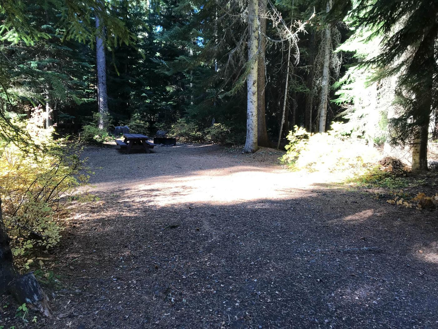 Trapper Creek 5