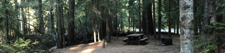 Trapper Creek 26