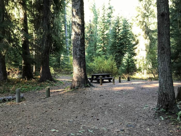 Trapper Creek 27