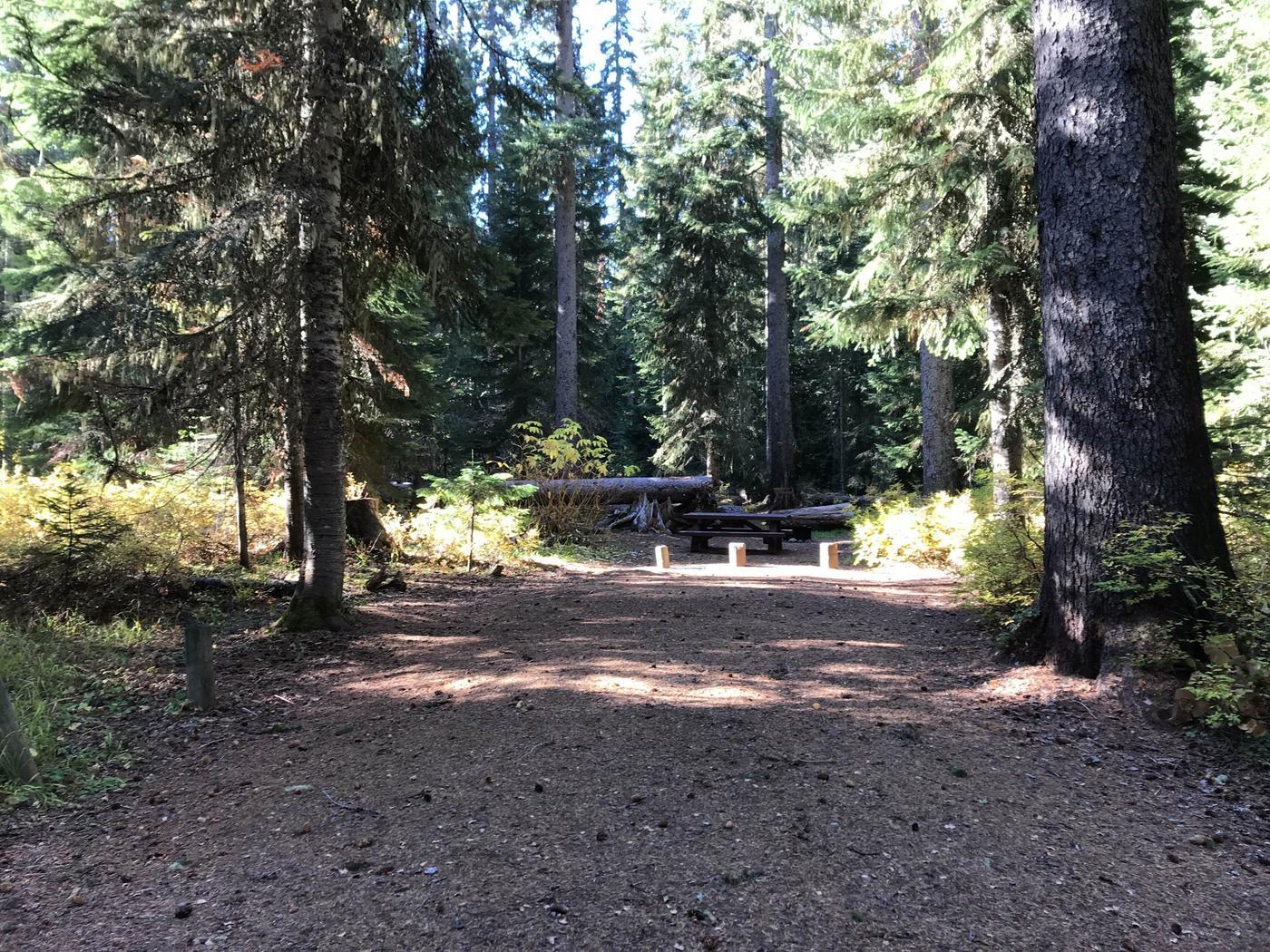 Trapper Creek 31