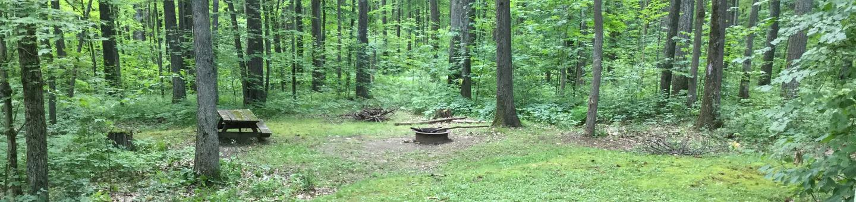 Tracy Ridge Recreation Area: Site 1