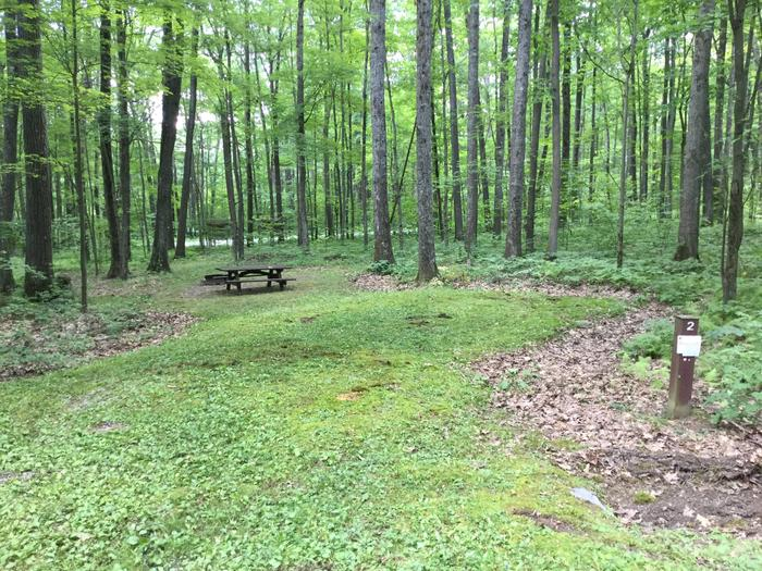 Tracy Ridge Recreation Area: Site 2