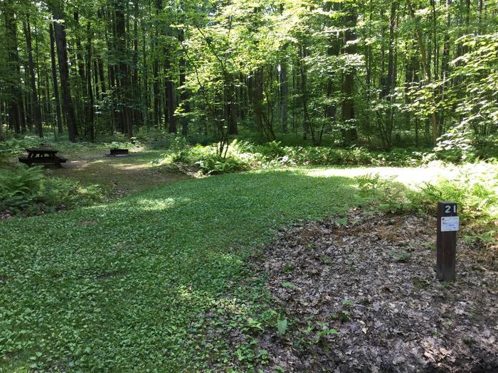 Tracy Ridge Recreation Area: Site 21