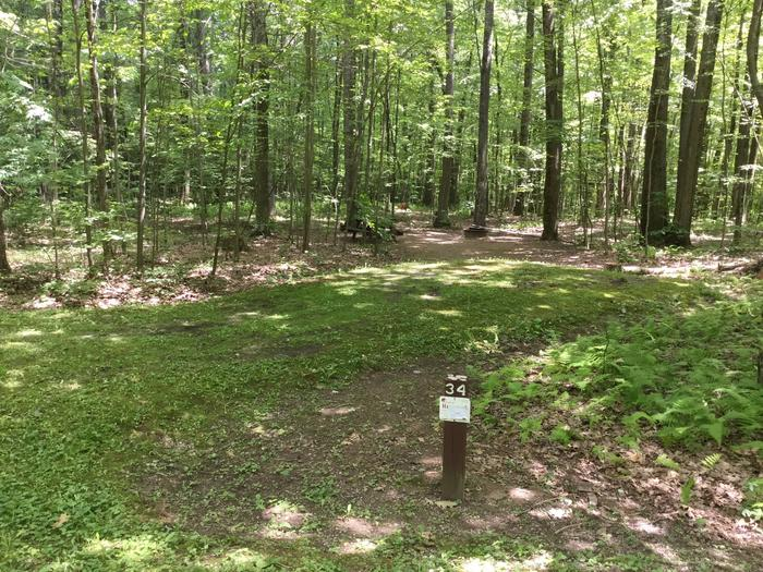 Tracy Ridge Recreation Area: Site 34
