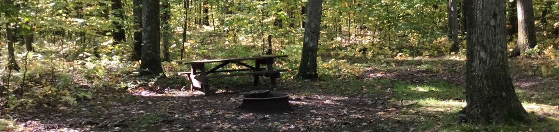 Tracy Ridge Recreation Area: Site 27