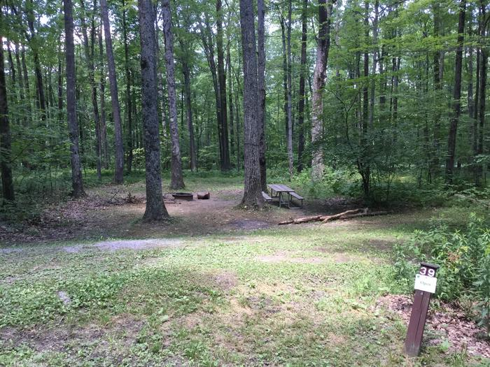 Tracy Ridge Recreation Area: Site 39
