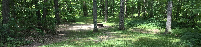Tracy Ridge Recreation Area: Site 40