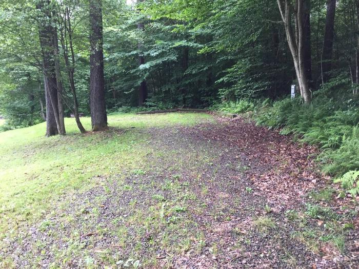 Twin Lakes Recreation Area: Site 10