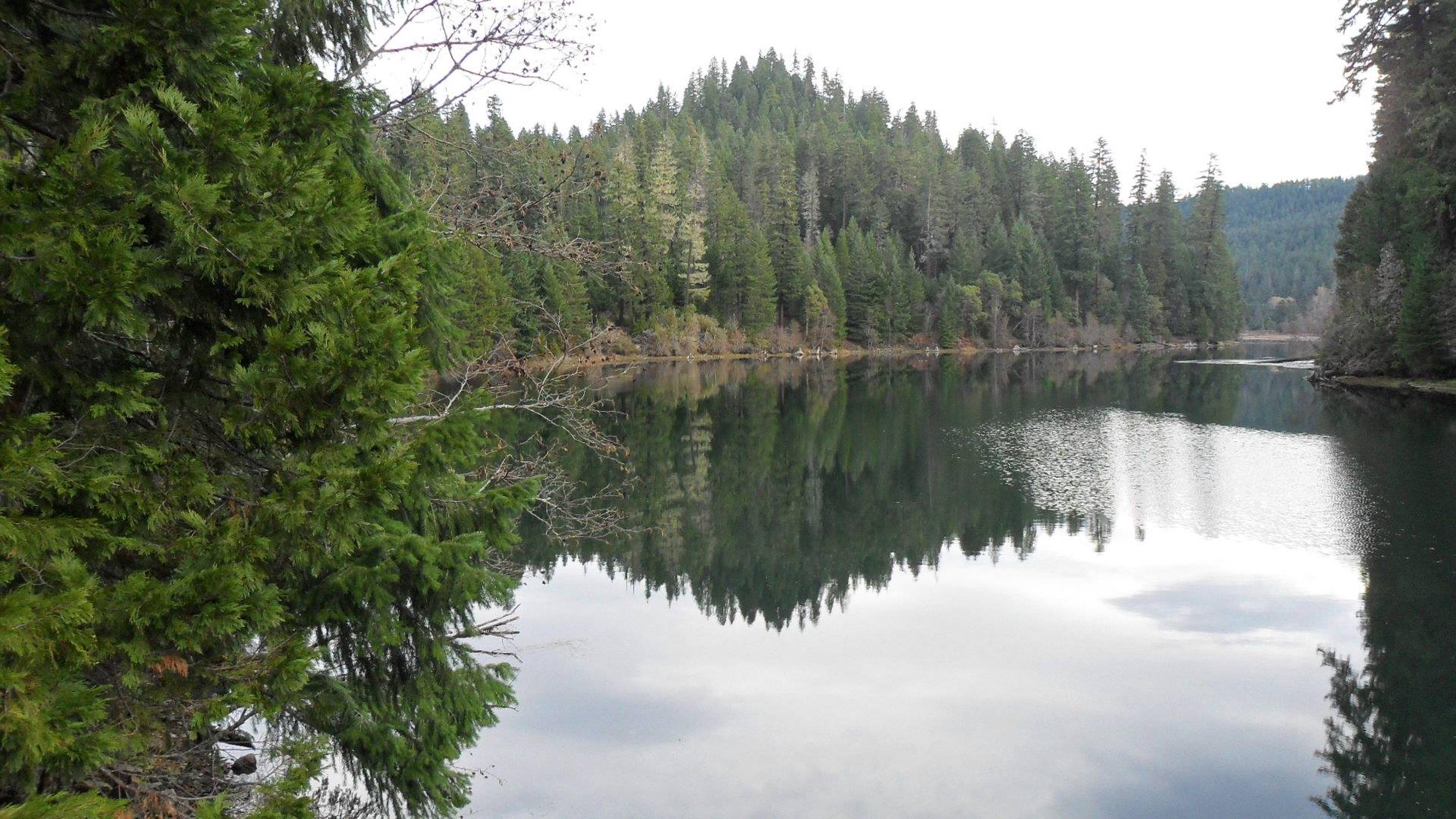 Nearby Toketee Lake