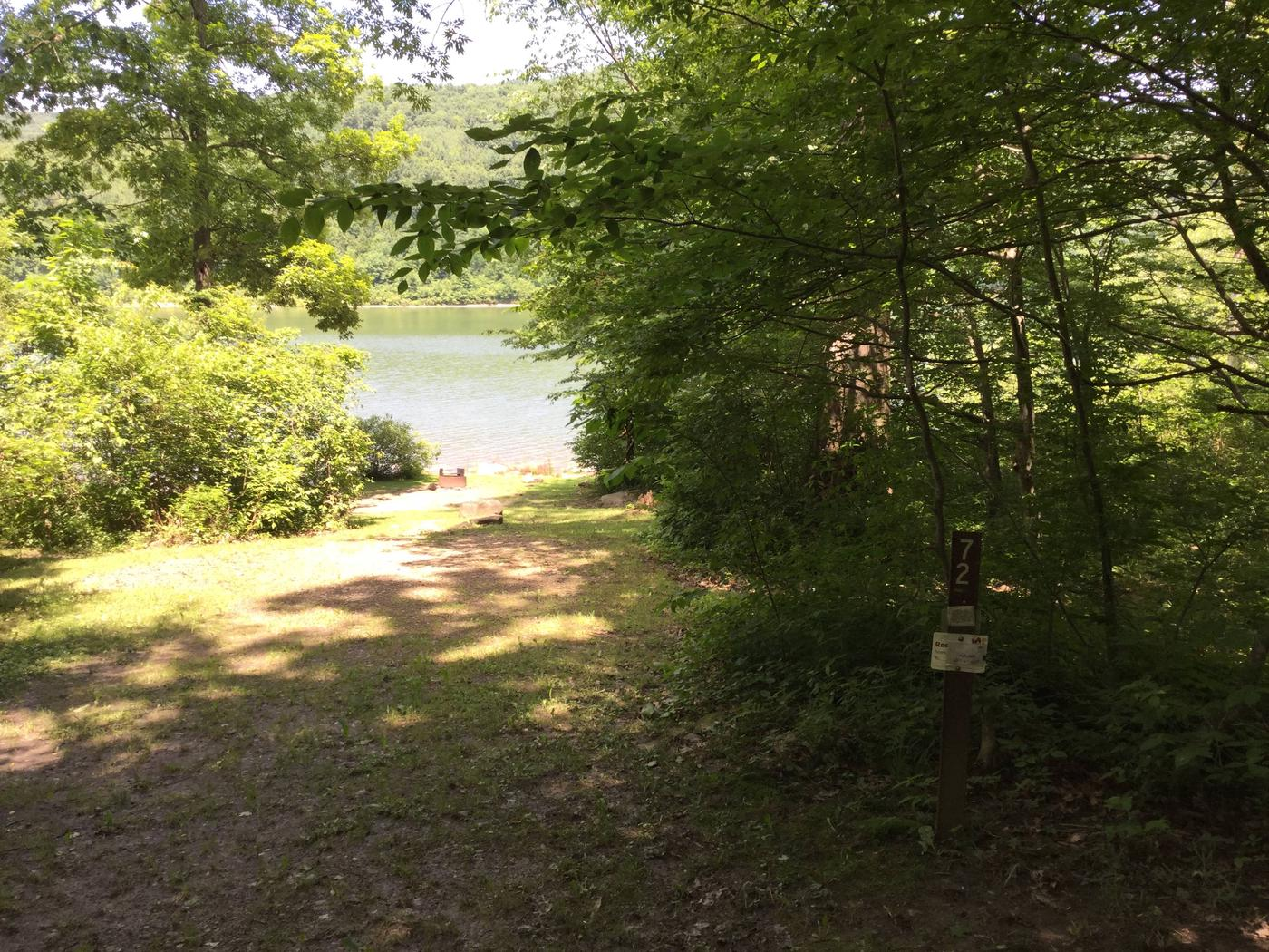 Willow Bay Recreation Area: Site 72