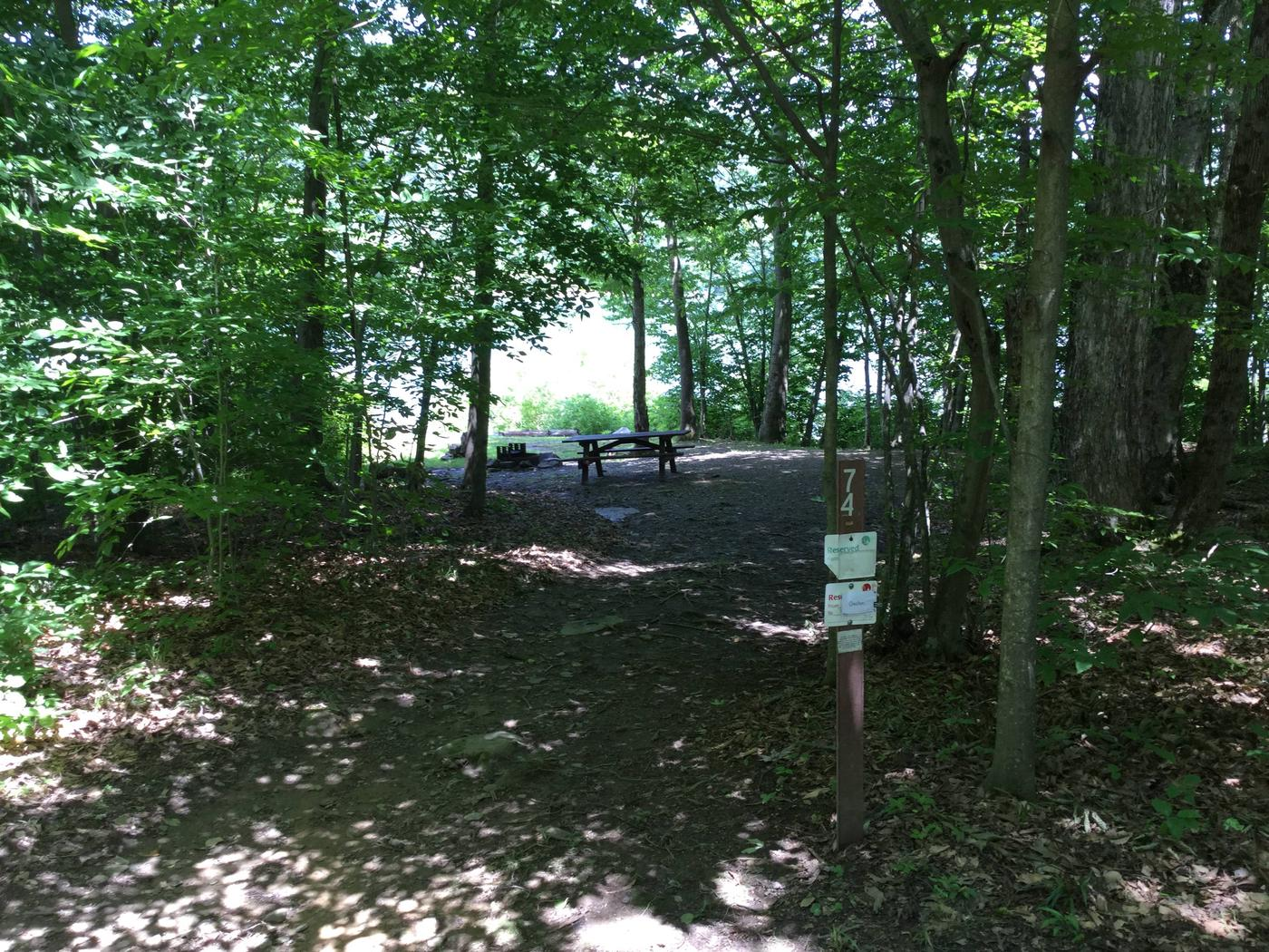 Willow Bay Recreation Area: Site 74
