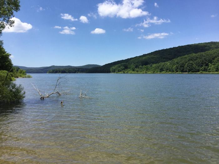 Willow Bay Recreation Area: Site 74 Water View
