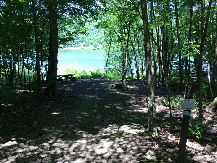 Willow Bay Recreation Area: Site 86