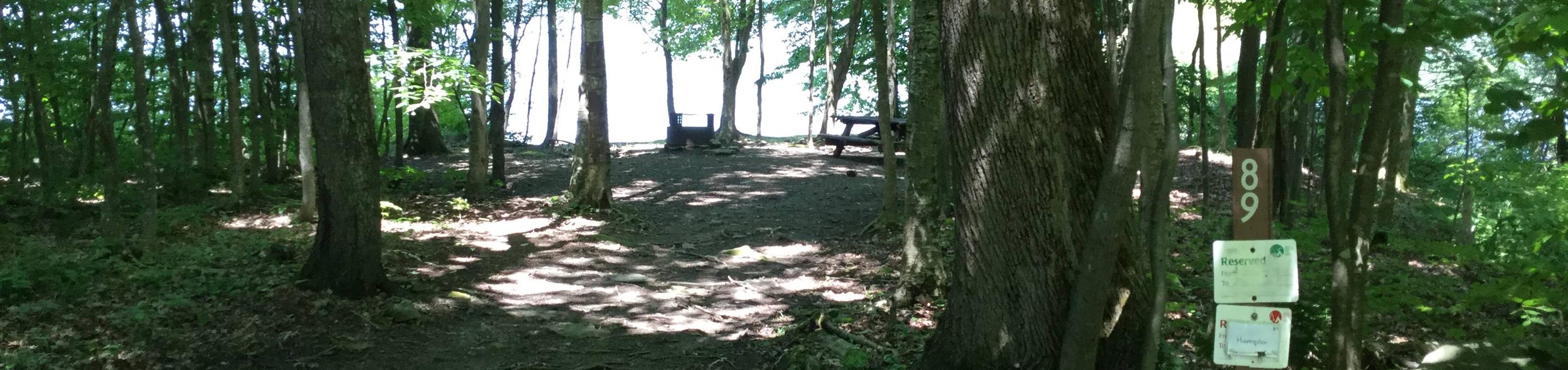Willow Bay Recreation Area: Site 89
