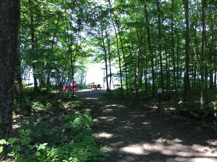 Willow Bay Recreation Area: Site 90