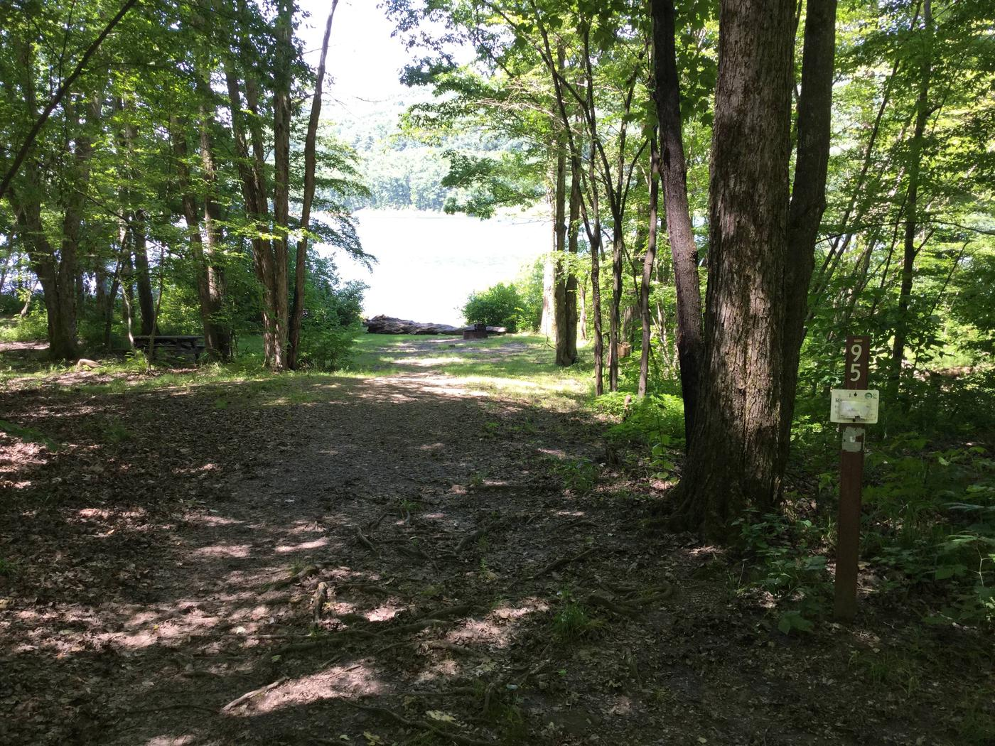 Willow Bay Recreation Area: Site 95