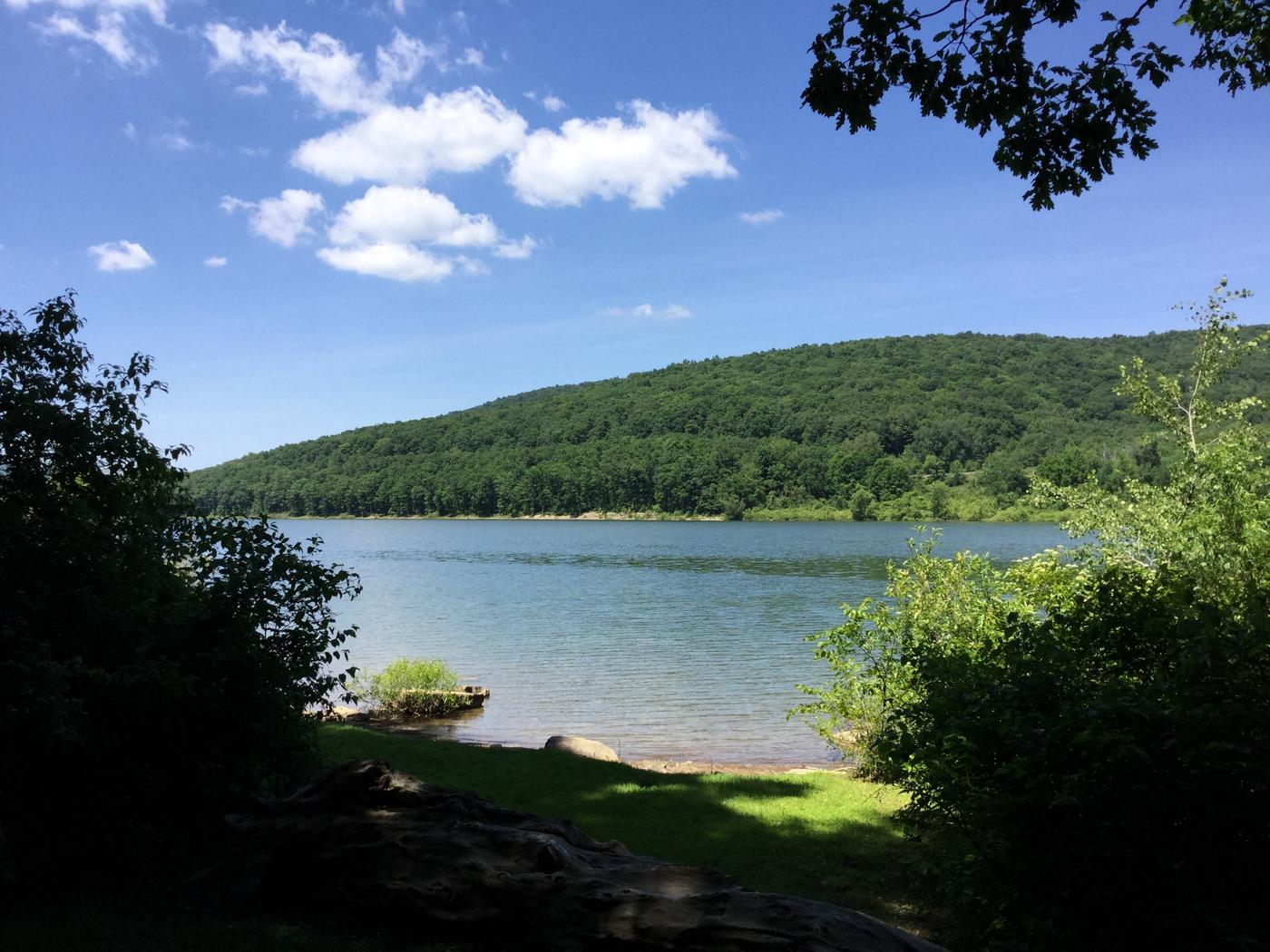 Willow Bay Recreation Area: Site 95 Water View