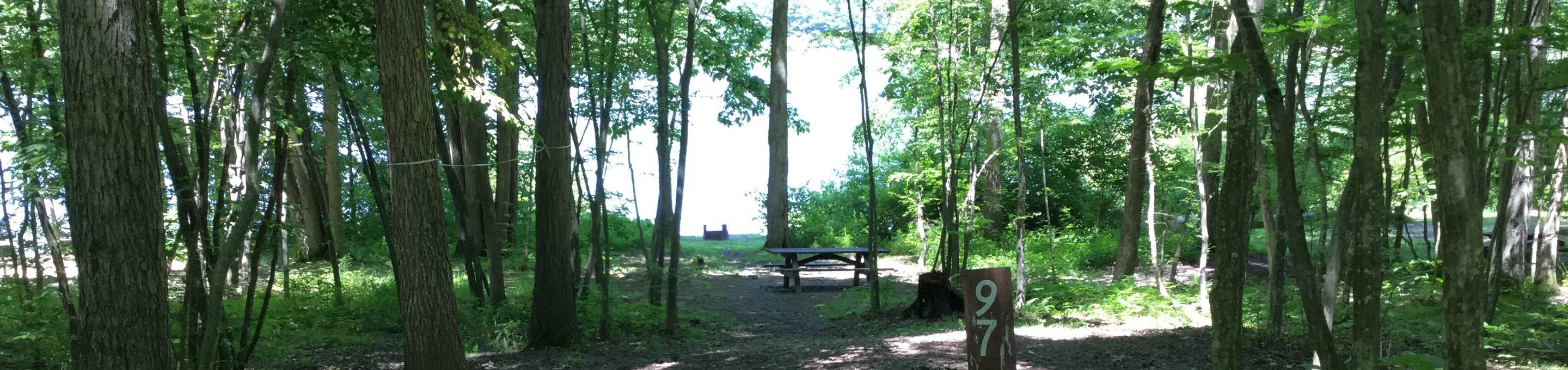 Willow Bay Recreation Area: Site 97