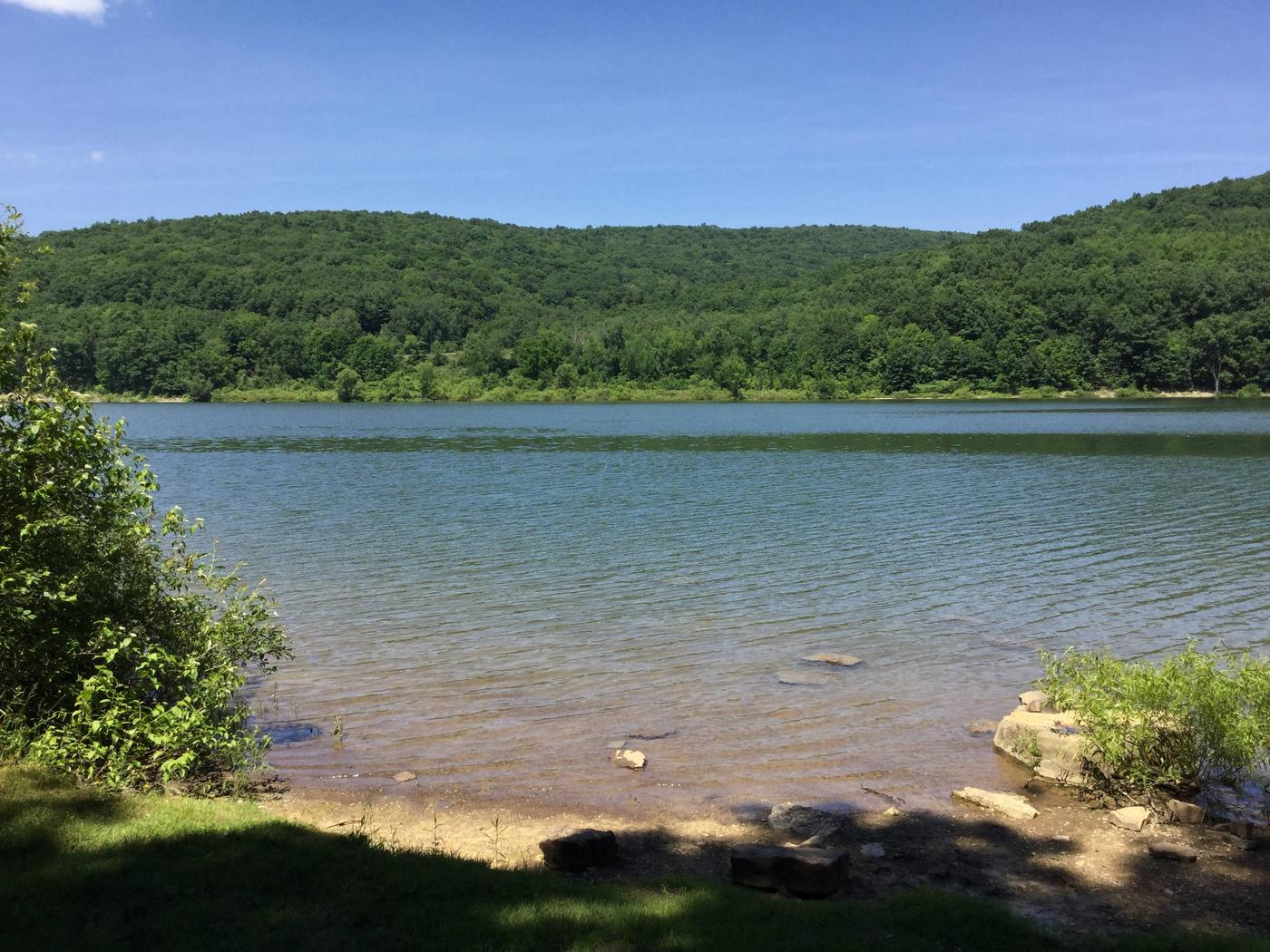 Willow Bay Recreation Area: Site 97 Water View