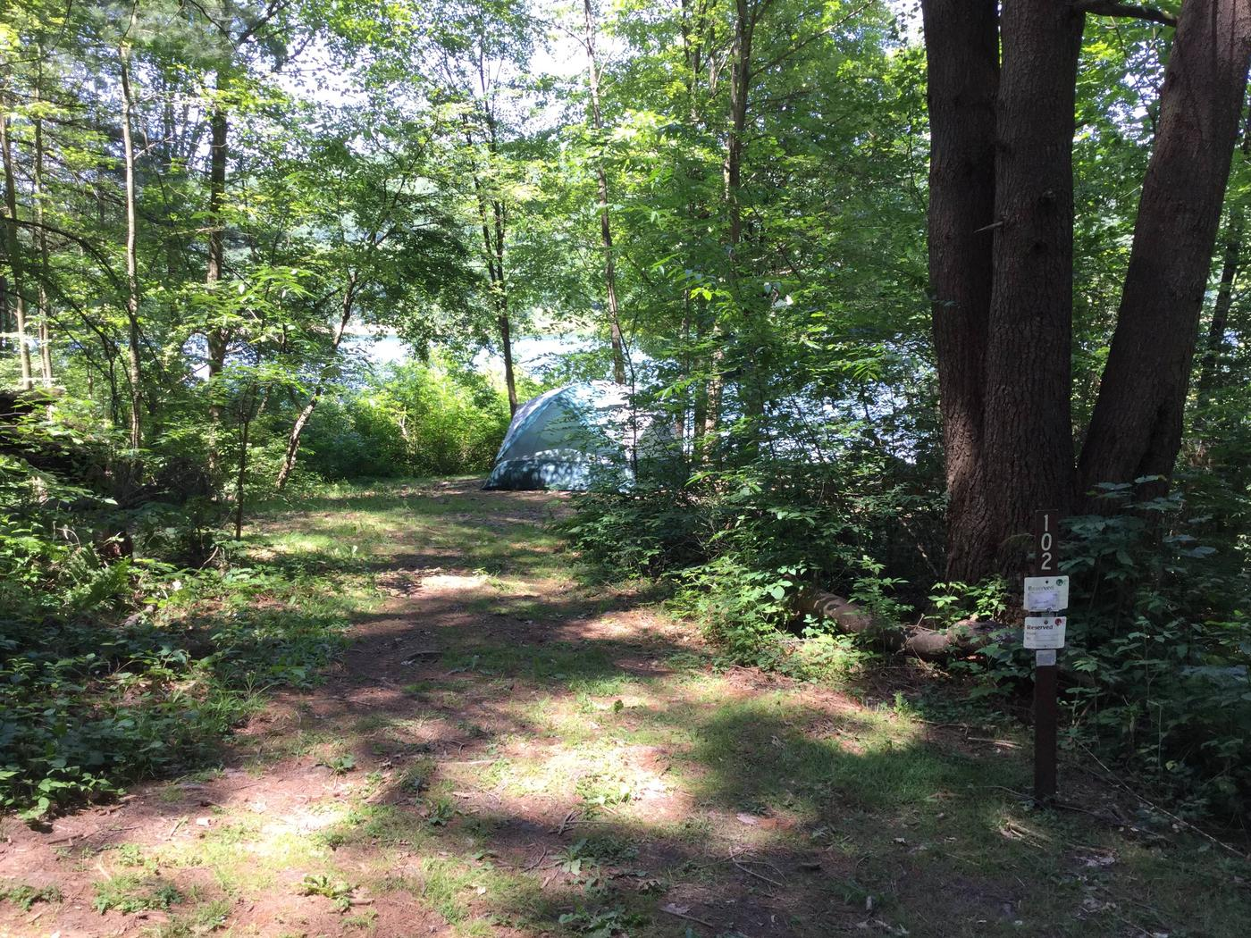 Willow Bay Recreation Area: Site 102