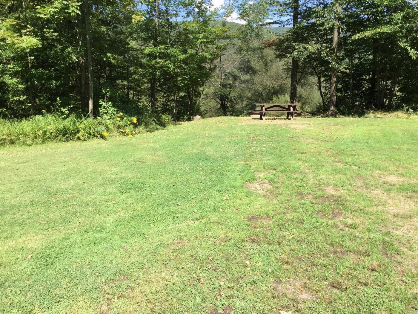 Willow Bay Recreation Area: Site 57