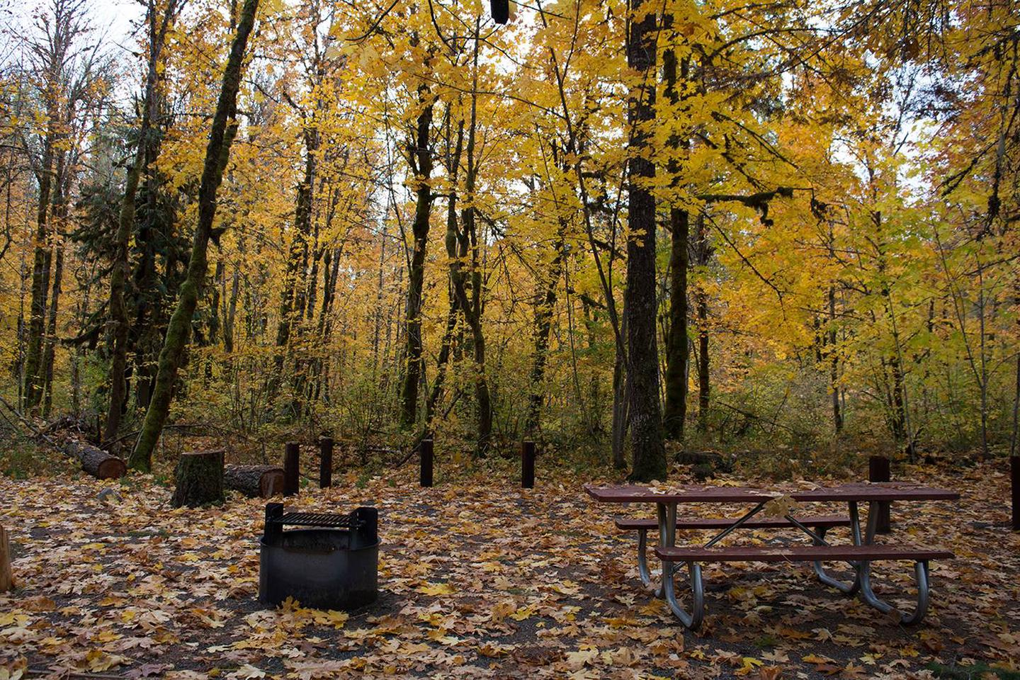 Preview photo of Beaver Campground