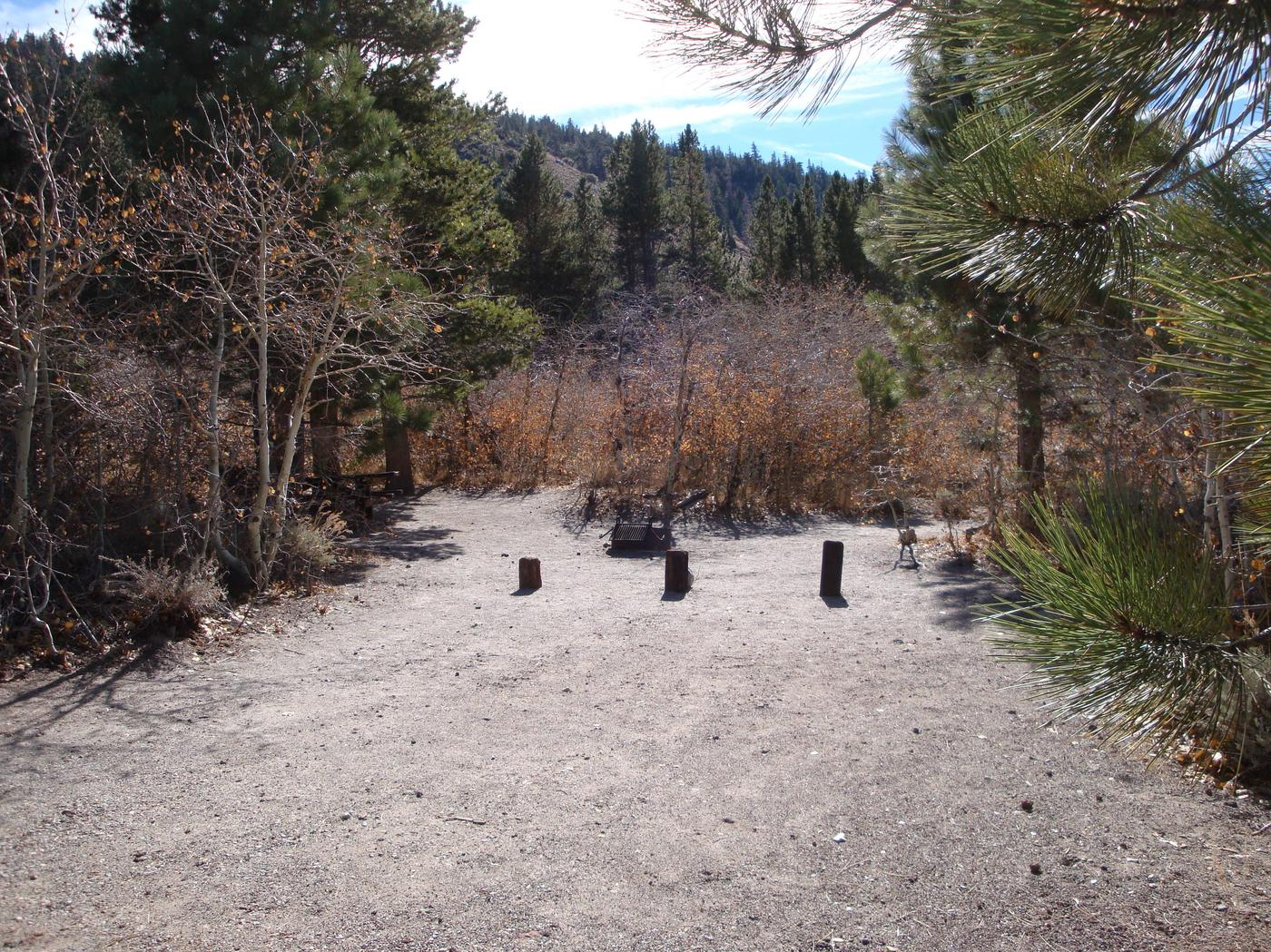 June Lake CG SITE T001