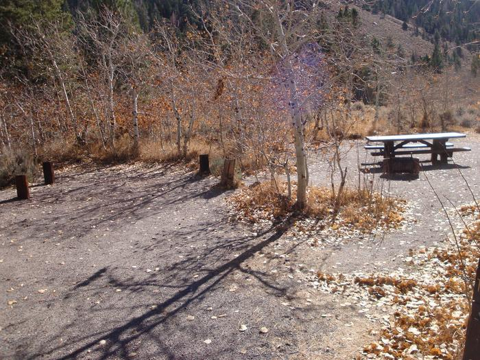 June Lake CG SITE T002