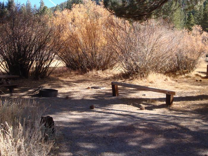 June Lake CG SITE T005