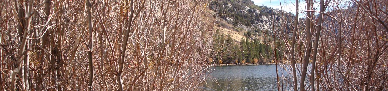 Silver Lake CG