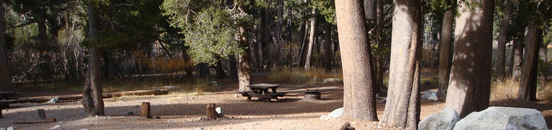 Twin Lakes CG SITE 3