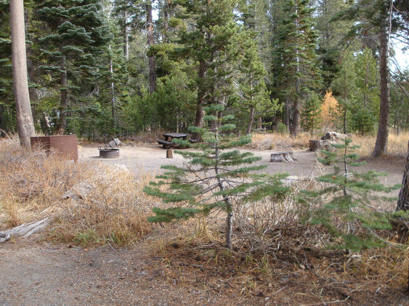 Twin Lakes CG SITE 20