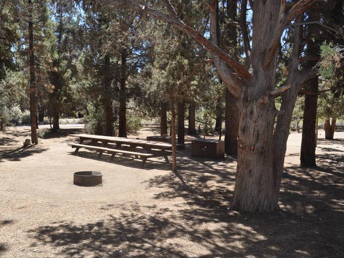 Serrano site 109/110 doublesite 109/110 double