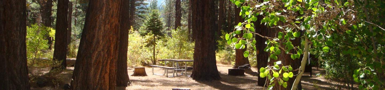 Sherwin Creek CG SITE 14