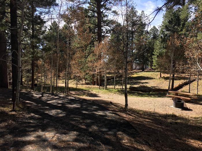 Picnic table, fire pit, and driveway for North Rim Campground, Site 6.