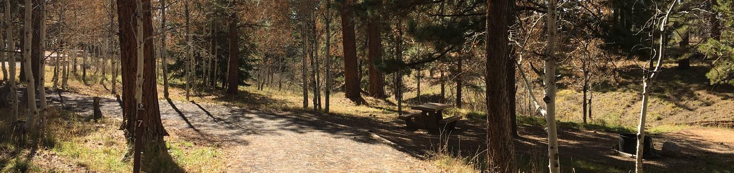 Picnic table, fire pit, and driveway for North Rim Campground, Site 7.