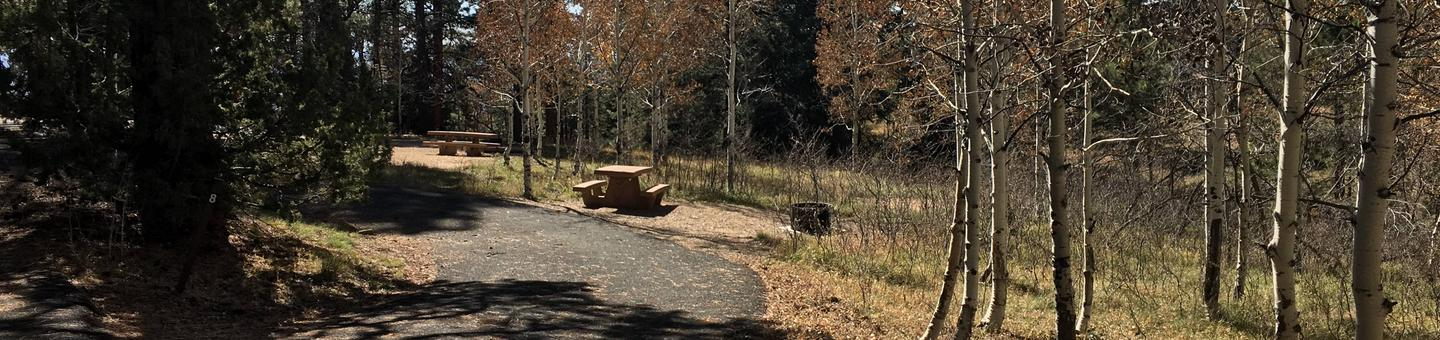 Picnic table, fire pit, and driveway for North Rim Campground, Site 8.