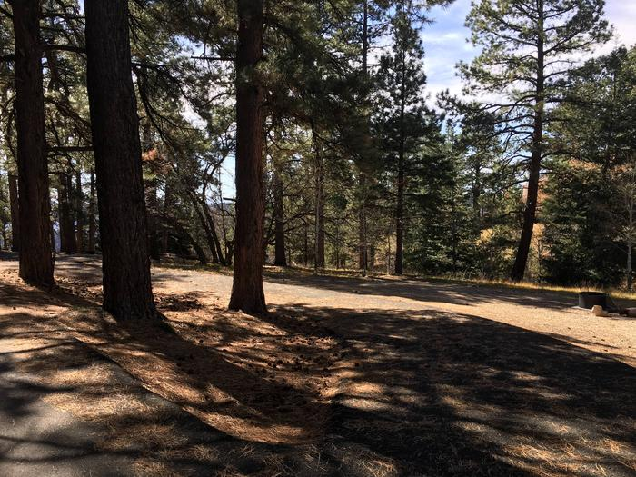 Picnic table, fire pit, and driveway for North Rim Campground, Site 9.