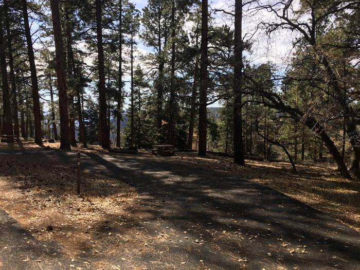 Picnic table, fire pit, and driveway for North Rim Campground, Site 10.